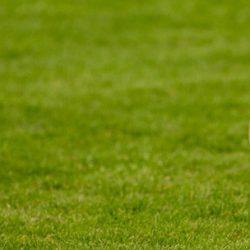 Fair Play Financeiro e o Plano de Revitalização das Sociedades Desportivas